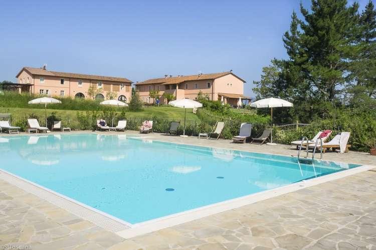 Vingård med svømmebasseng. Ferieleiligheter i Toscana, nært Pisa og Firenze. Foto.