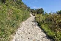 Bildet viser en av turveiene i Monte Pisano. Denne stien er belagt med stein. stein