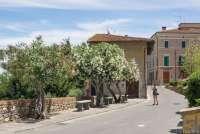 Bildet viser Karine Angell som fotograferer blomstrende frukttrær i vinbyen Terricciola. En dag på jobben med SiToscana.