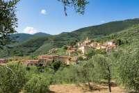 Bildet viser middelalderlandsbyen Montemagno sett fra en av olivenlundene på veien mot Verruca. Like ved kirkegården.