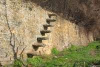 Bildet viser en mur med en tradisjonell steintrapp mellom to terrasser på en olivengård i Toscana.