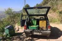 Bildet viser en panda lastet med kasser fulle av oliven. Bildet er fra en olivengård ovenfor Montemagno, ved Pisa i Toscana.